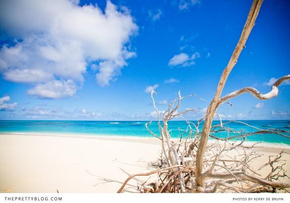 Kerry-de-Bruyn_Seychelles_0038-585x410